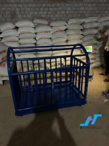 Cân sàn heo điện tử 1 tấn là loại cân chuyên dùng cho cân các loại động vật, gia súc, được thiết kế chuẩn lồng cho cân heo