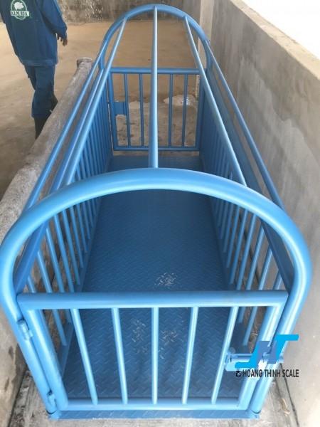 Cân sàn heo điện tử 2 tấn là loại cân chuyên dùng cho cân các loại động vật, gia súc, được thiết kế chuẩn lồng cho cân heo