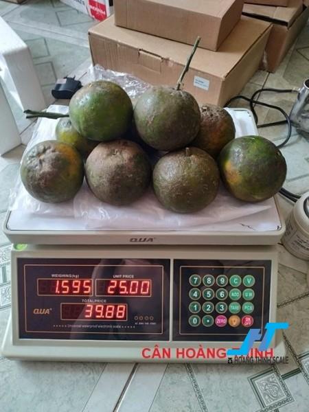 Cân điện tử tính tiền QUA 30kg cân chuyên dùng cho cân siêu thị bán hàng được Cân Hoàng Thịnh cung cấp chính hãng chất lượng. Liên hệ 0966.105.408 để được giảm giá ngay 10%